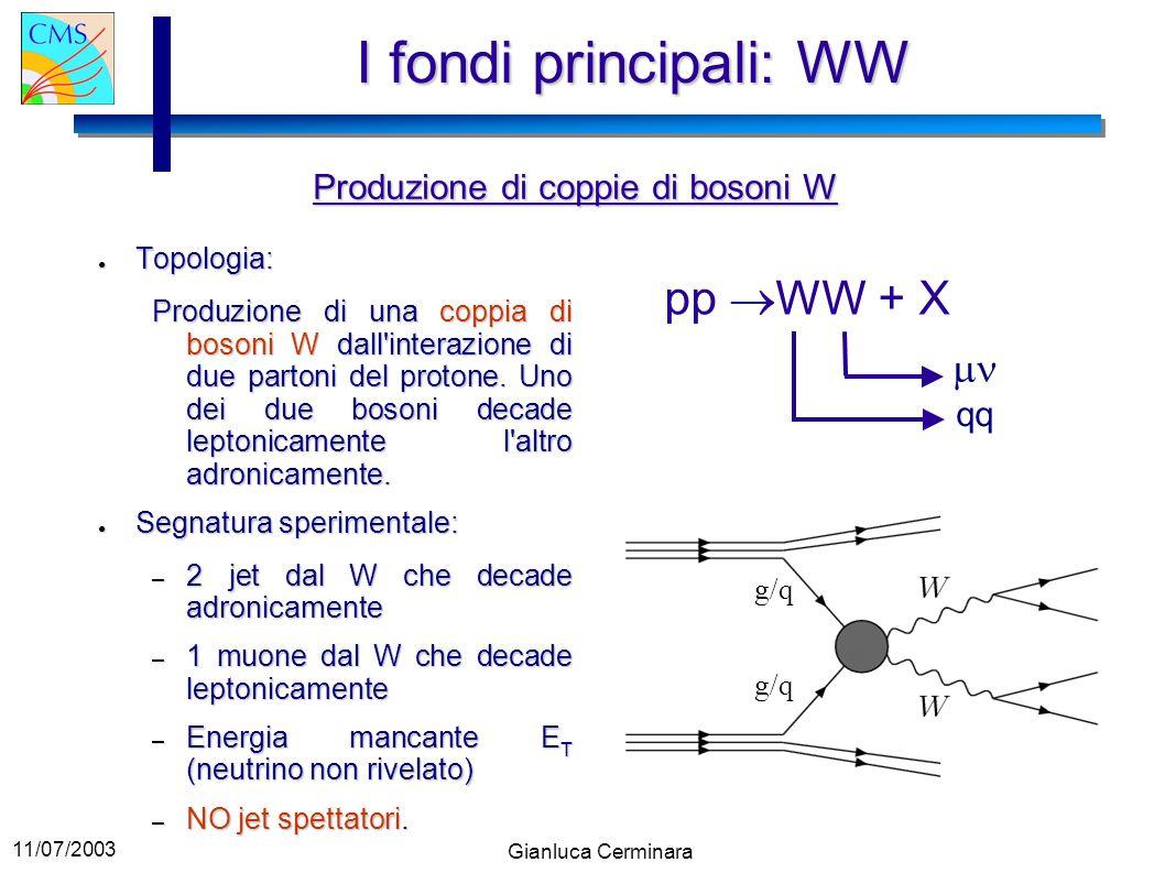 11/07/2003 Gianluca Cerminara I fondi principali: WW Topologia: Topologia: Produzione di una coppia di bosoni W dall'interazione di due partoni del pr