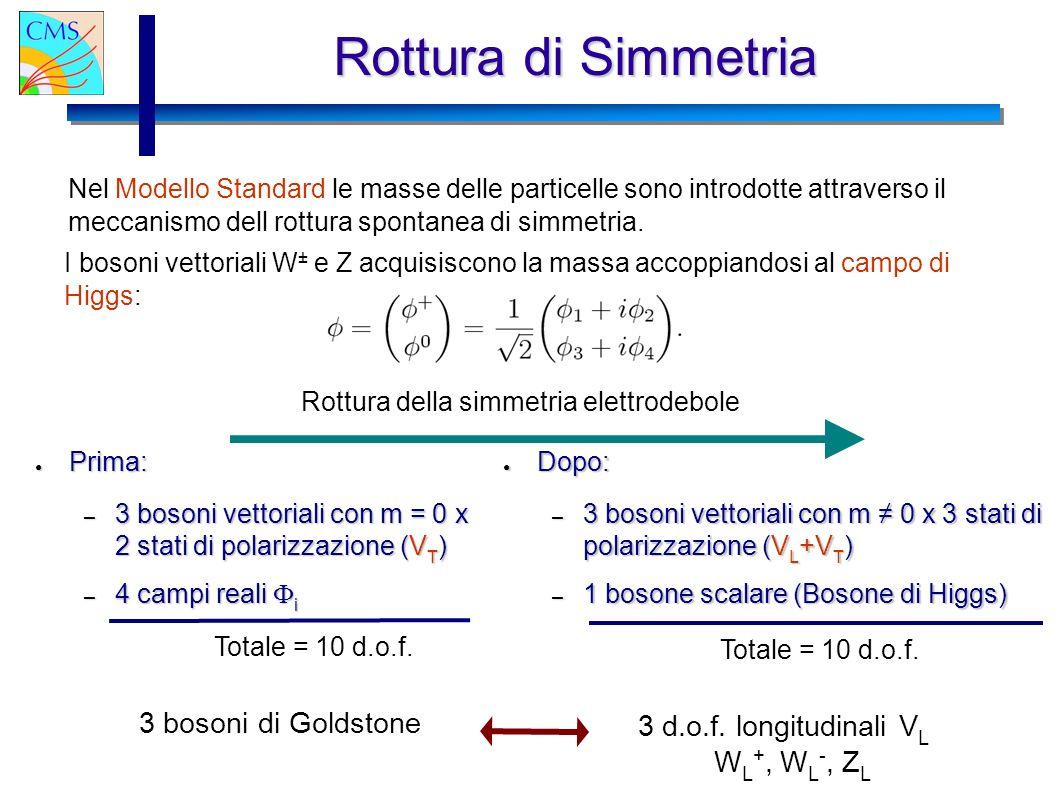 11/07/2003 Gianluca Cerminara Rottura di Simmetria Nel Modello Standard le masse delle particelle sono introdotte attraverso il meccanismo dell rottur