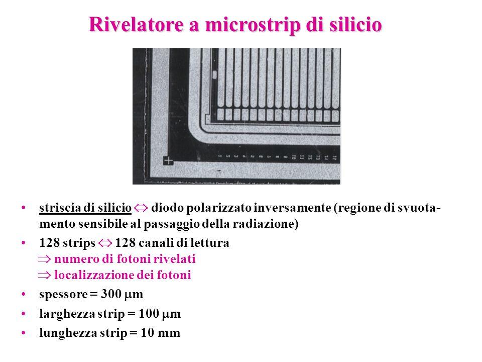 Rivelatore a microstrip di silicio striscia di silicio diodo polarizzato inversamente (regione di svuota- mento sensibile al passaggio della radiazion