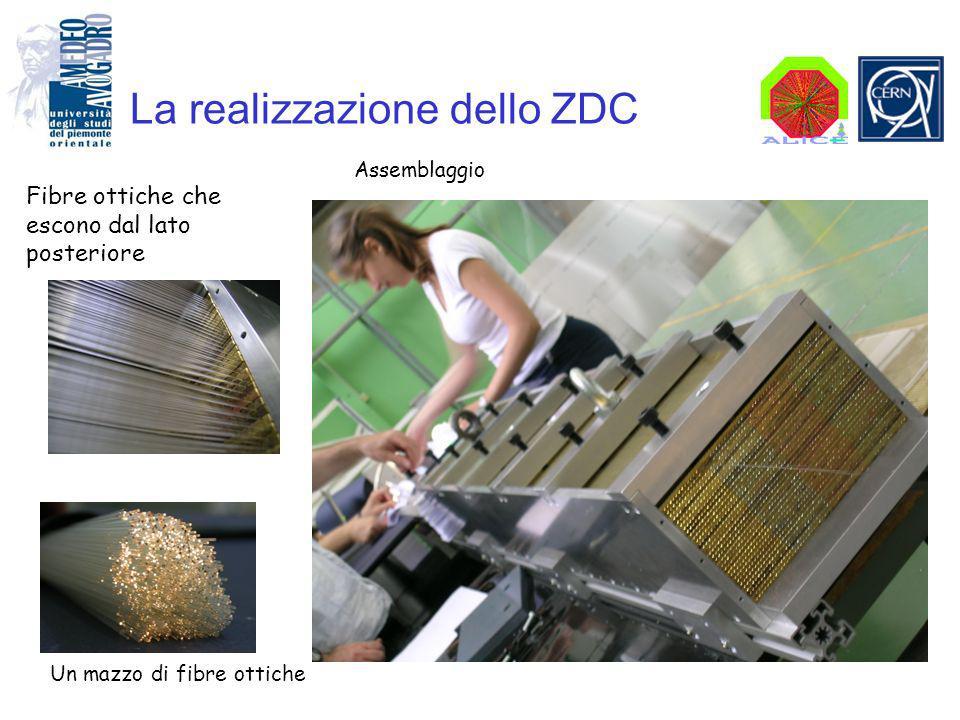 La realizzazione dello ZDC Fibre ottiche che escono dal lato posteriore Assemblaggio Un mazzo di fibre ottiche