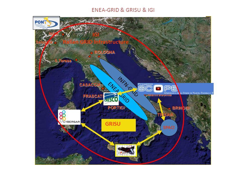 CASACCIA FRASCATI S.Teresa Saluggia Ispra BOLOGNA PORTICI BRINDISI Manfredonia ENEA-GRID & GRISU & IGI ENEA-GRID SPACI TRISAIA GRISU INFN-GRID IGI Italian GRID Infrastructure