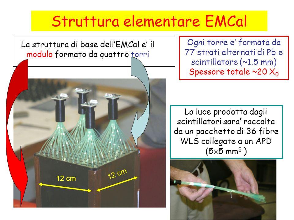 Struttura elementare EMCal La struttura di base dellEMCal e il modulo formato da quattro torri Ogni torre e formata da 77 strati alternati di Pb e sci