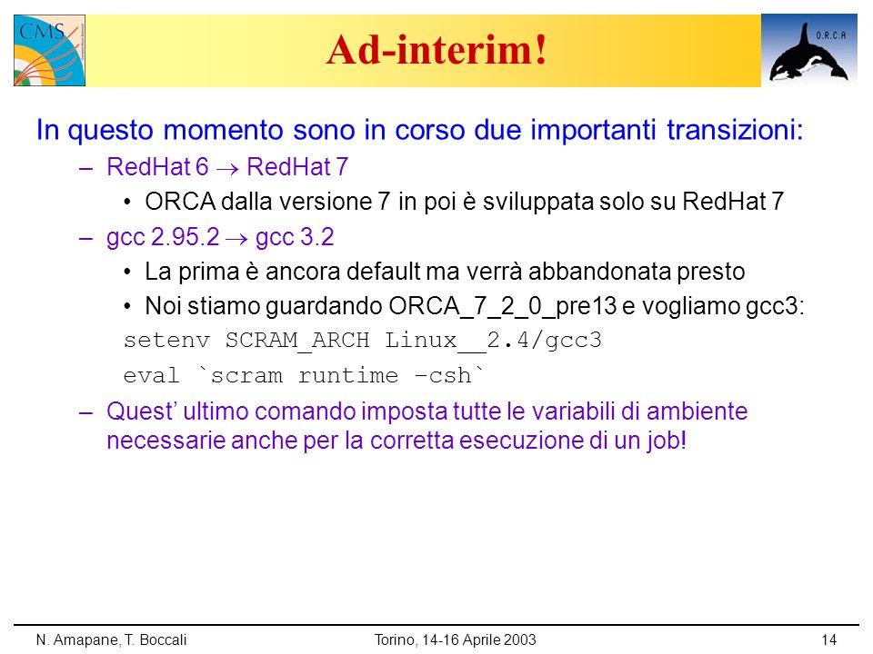 N. Amapane, T. BoccaliTorino, 14-16 Aprile 200314 Ad-interim! In questo momento sono in corso due importanti transizioni: –RedHat 6 RedHat 7 ORCA dall