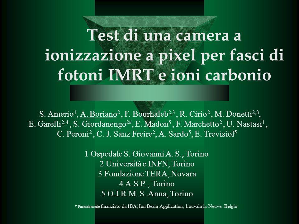 Test di una camera a ionizzazione a pixel per fasci di fotoni IMRT e ioni carbonio S.