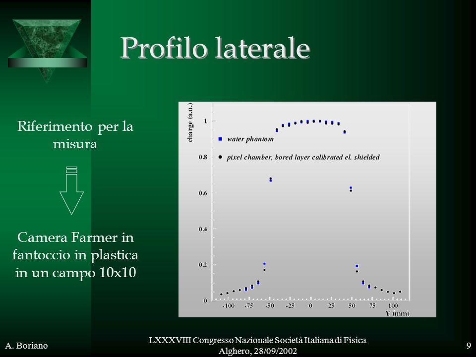 A. Boriano LXXXVIII Congresso Nazionale Società Italiana di Fisica Alghero, 28/09/2002 9 mm Profilo laterale Riferimento per la misura Camera Farmer i