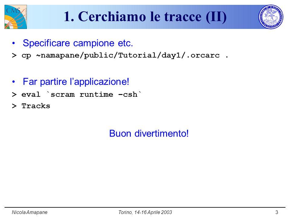 Nicola AmapaneTorino, 14-16 Aprile 20033 1. Cerchiamo le tracce (II) Specificare campione etc.