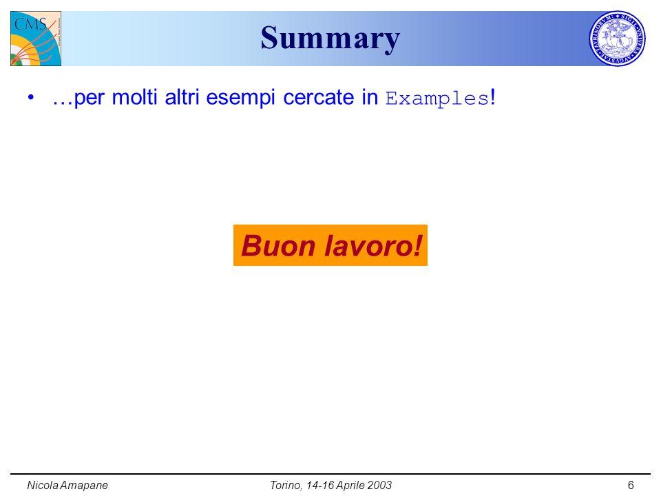 Nicola AmapaneTorino, 14-16 Aprile 20036 Summary …per molti altri esempi cercate in Examples .