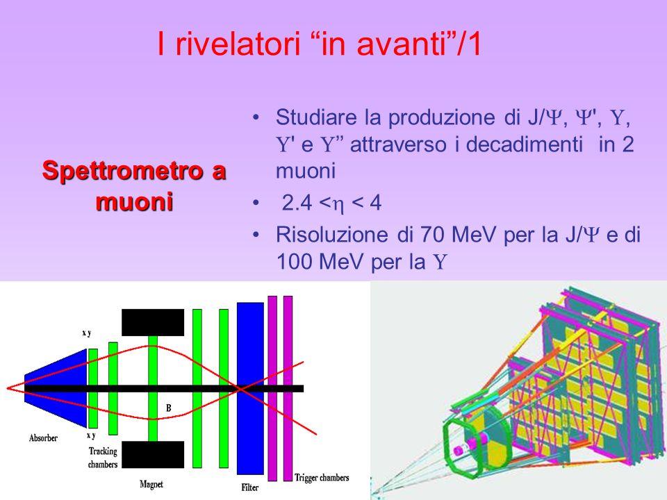 19 I rivelatori in avanti/1 Studiare la produzione di J/, ',, ' e attraverso i decadimenti in 2 muoni 2.4 < < 4 Risoluzione di 70 MeV per la J/ e di 1