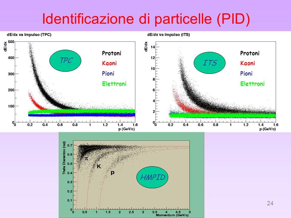 24 Identificazione di particelle (PID) Protoni Kaoni Pioni Elettroni Protoni Kaoni Pioni Elettroni TPC HMPID ITS