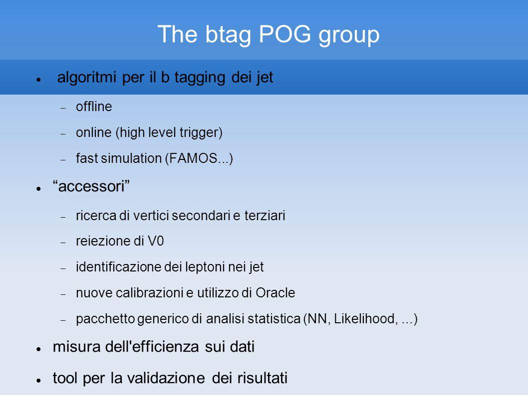 The btag POG group algoritmi per il b tagging dei jet offline online (high level trigger) fast simulation (FAMOS...) accessori ricerca di vertici secondari e terziari reiezione di V0 identificazione dei leptoni nei jet nuove calibrazioni e utilizzo di Oracle pacchetto generico di analisi statistica (NN, Likelihood,...) misura dell efficienza sui dati tool per la validazione dei risultati