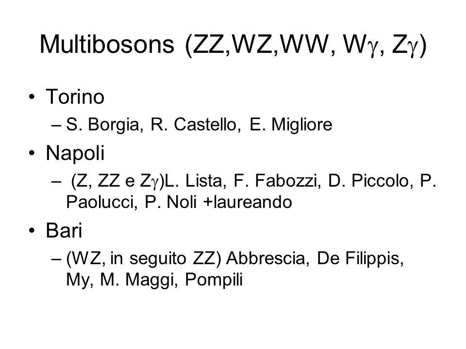 Multibosons (ZZ,WZ,WW, W, Z ) Torino –S. Borgia, R. Castello, E. Migliore Napoli – (Z, ZZ e Z )L. Lista, F. Fabozzi, D. Piccolo, P. Paolucci, P. Noli