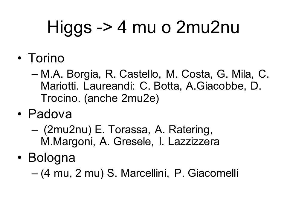 Higgs -> 4 mu o 2mu2nu Torino –M.A. Borgia, R. Castello, M. Costa, G. Mila, C. Mariotti. Laureandi: C. Botta, A.Giacobbe, D. Trocino. (anche 2mu2e) Pa