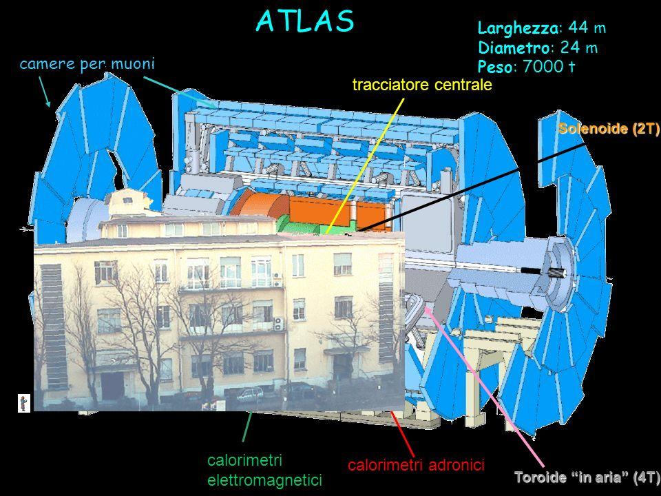 ATLAS calorimetri elettromagnetici calorimetri adronici Toroide in aria (4T) camere per muoni tracciatore centrale Solenoide (2T) Larghezza: 44 m Diam