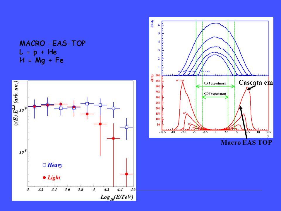 MACRO -EAS-TOP L = p + He H = Mg + Fe Macro EAS TOP Cascata em