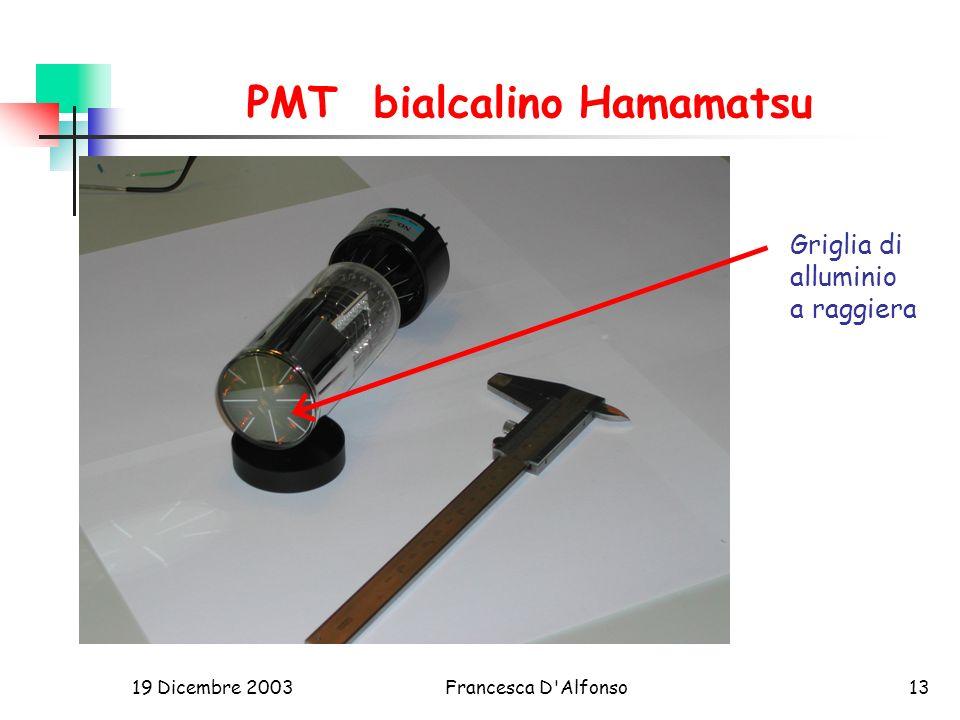 19 Dicembre 2003Francesca D Alfonso13 PMT bialcalino Hamamatsu Griglia di alluminio a raggiera