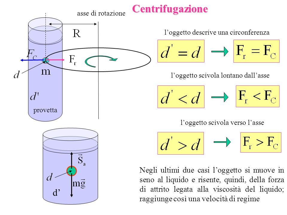 provetta asse di rotazioneCentrifugazione d loggetto descrive una circonferenza loggetto scivola lontano dallasse loggetto scivola verso lasse Negli u