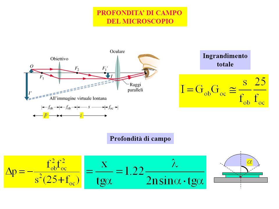 PROFONDITA DI CAMPO DEL MICROSCOPIO Ingrandimento totale Profondità di campo