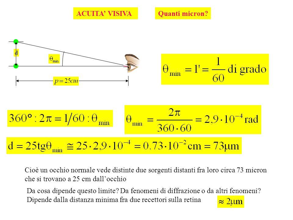ACUITA VISIVA Cioè un occhio normale vede distinte due sorgenti distanti fra loro circa 73 micron che si trovano a 25 cm dallocchio Da cosa dipende qu