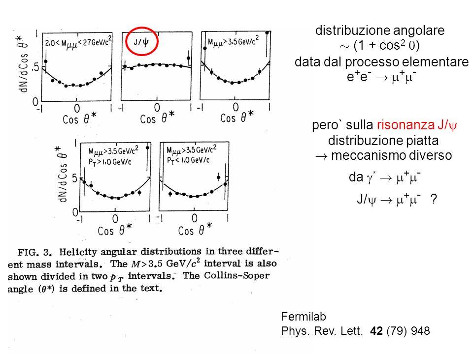 Fermilab Phys. Rev. Lett. 42 (79) 948 distribuzione angolare » (1 + cos 2 ) data dal processo elementare e + e - ! + - pero` sulla risonanza J/ distri