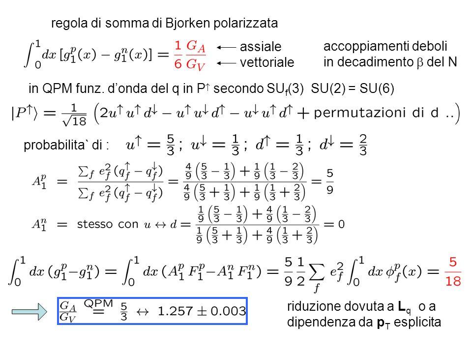 regola di somma di Bjorken polarizzata assiale vettoriale accoppiamenti deboli in decadimento del N in QPM funz. donda del q in P