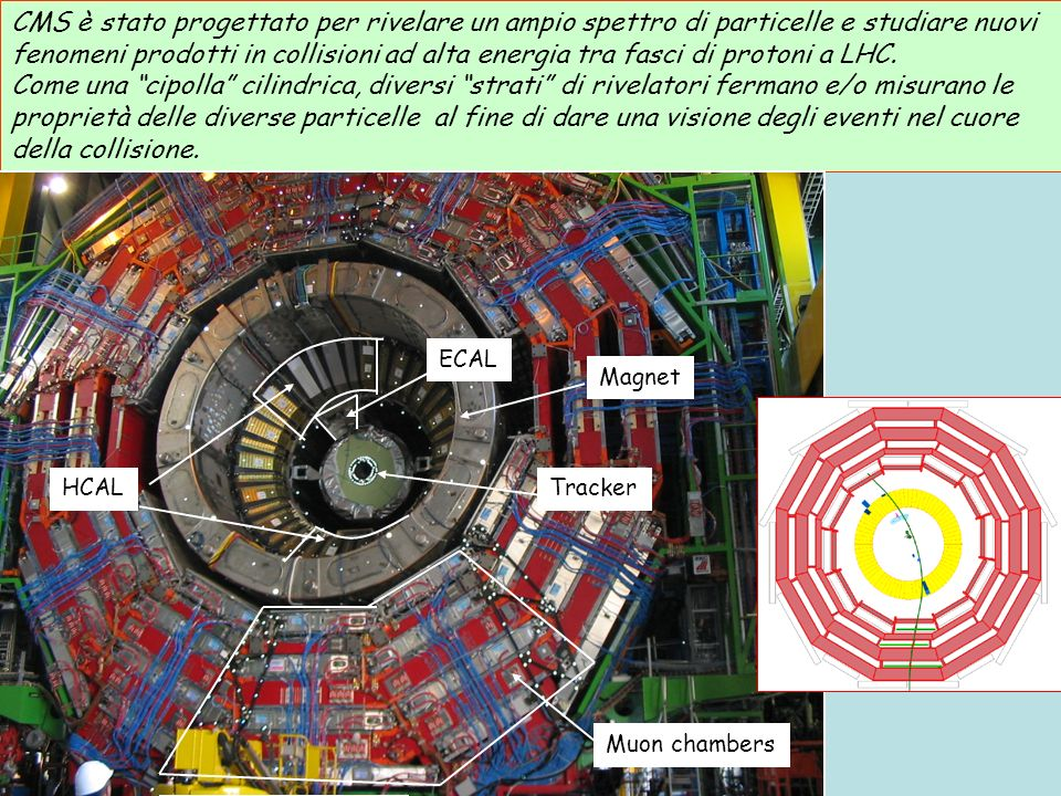 CMS è stato progettato per rivelare un ampio spettro di particelle e studiare nuovi fenomeni prodotti in collisioni ad alta energia tra fasci di protoni a LHC.
