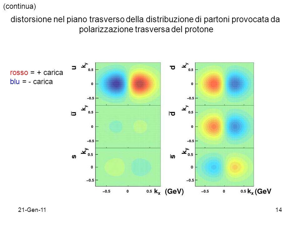 21-Gen-1114 (continua) distorsione nel piano trasverso della distribuzione di partoni provocata da polarizzazione trasversa del protone rosso = + carica blu = - carica