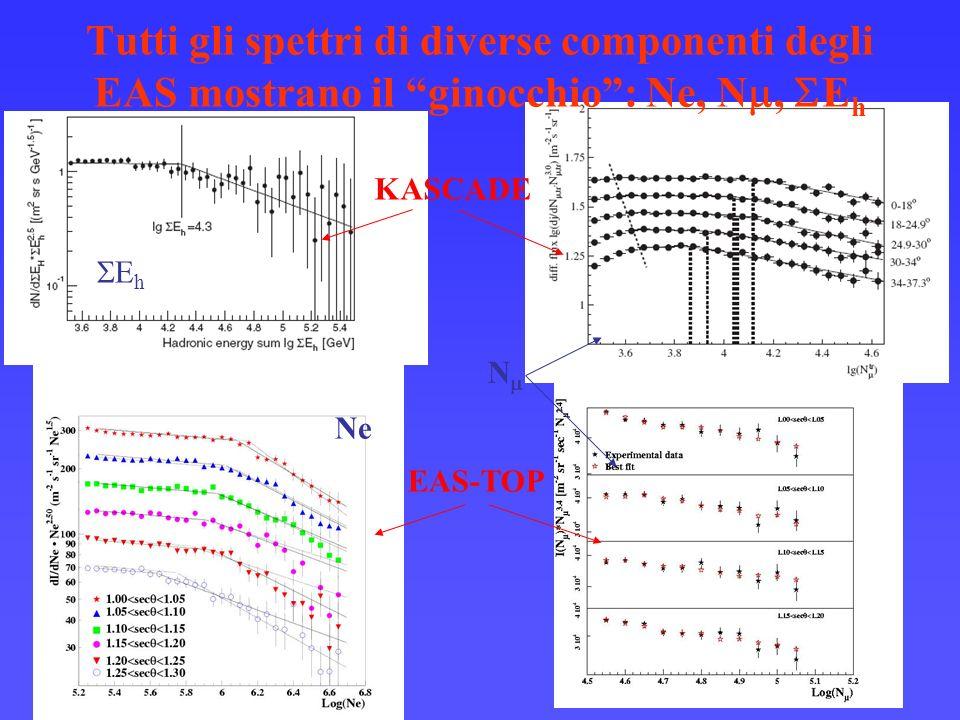 Tutti gli spettri di diverse componenti degli EAS mostrano il ginocchio: Ne, N, E h KASCADE EAS-TOP N Ne E h