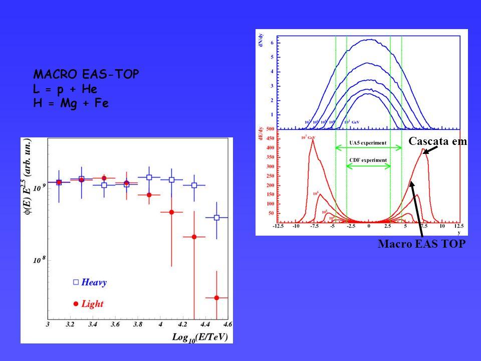 MACRO EAS-TOP L = p + He H = Mg + Fe Macro EAS TOP Cascata em