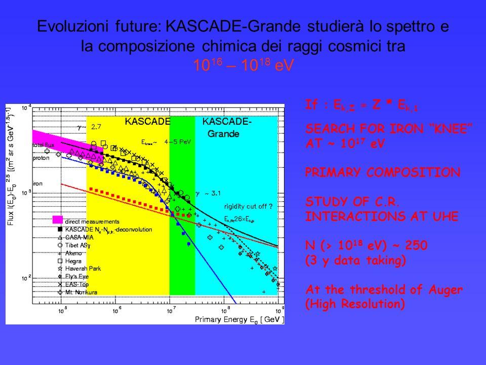 Evoluzioni future: KASCADE-Grande studierà lo spettro e la composizione chimica dei raggi cosmici tra 10 16 – 10 18 eV If : E k,Z = Z * E k,1 SEARCH FOR IRON KNEE AT ~ 10 17 eV PRIMARY COMPOSITION STUDY OF C.R.