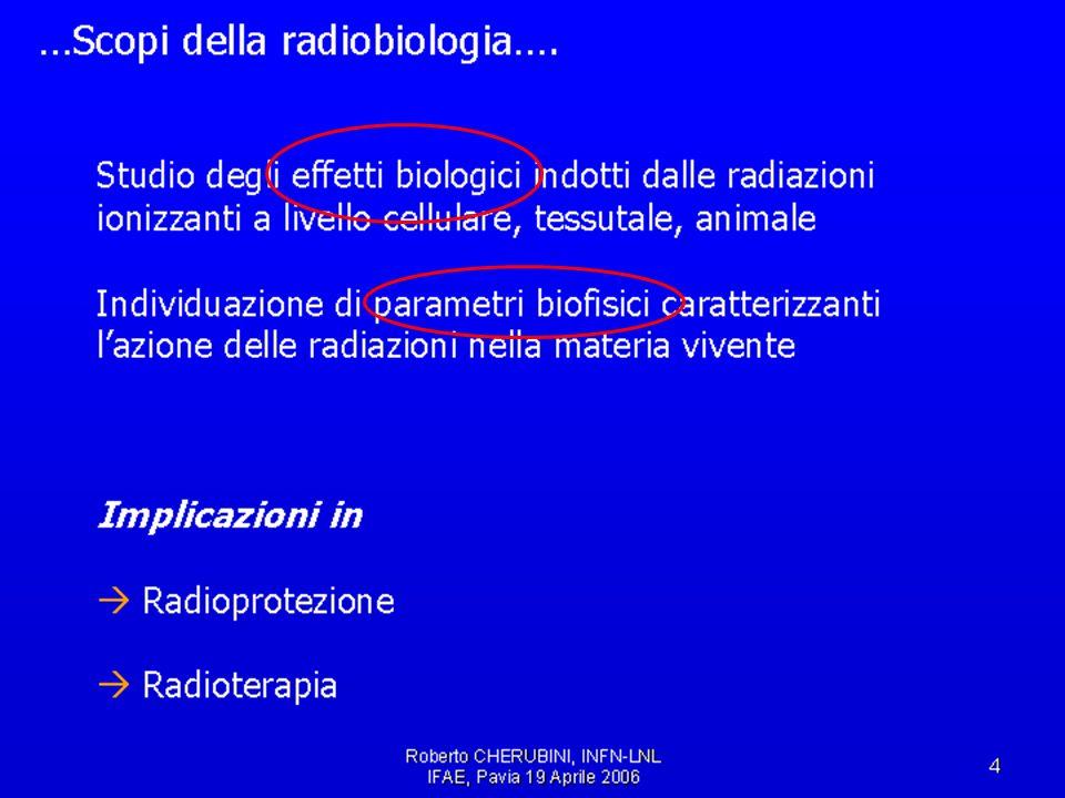 IFAE2006, Pavia, 21/4/2006Cardini, Michelotto, Rosso49