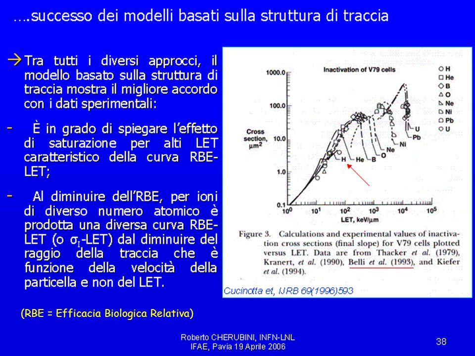 IFAE2006, Pavia, 21/4/2006Cardini, Michelotto, Rosso53 (RBE = Efficacia Biologica Relativa)