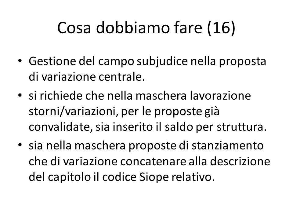 Cosa dobbiamo fare (16) Gestione del campo subjudice nella proposta di variazione centrale.