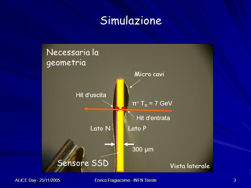 ALICE Day - 25/11/2005 Enrico Fragiacomo - INFN Trieste 3 300 μm π + T π = 7 GeV Sensore SSD Vista laterale Simulazione Micro cavi Lato PLato N Hit duscita Hit dentrata Necessaria la geometria