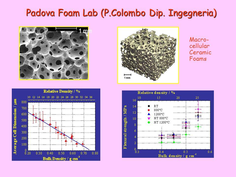 Padova Foam Lab (P.Colombo Dip. Ingegneria) 1 mm Macro- cellular Ceramic Foams