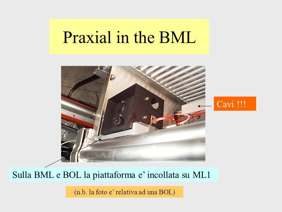 Praxial in the BML Sulla BML e BOL la piattaforma e incollata su ML1 Cavi !!! (n.b. la foto e relativa ad una BOL)