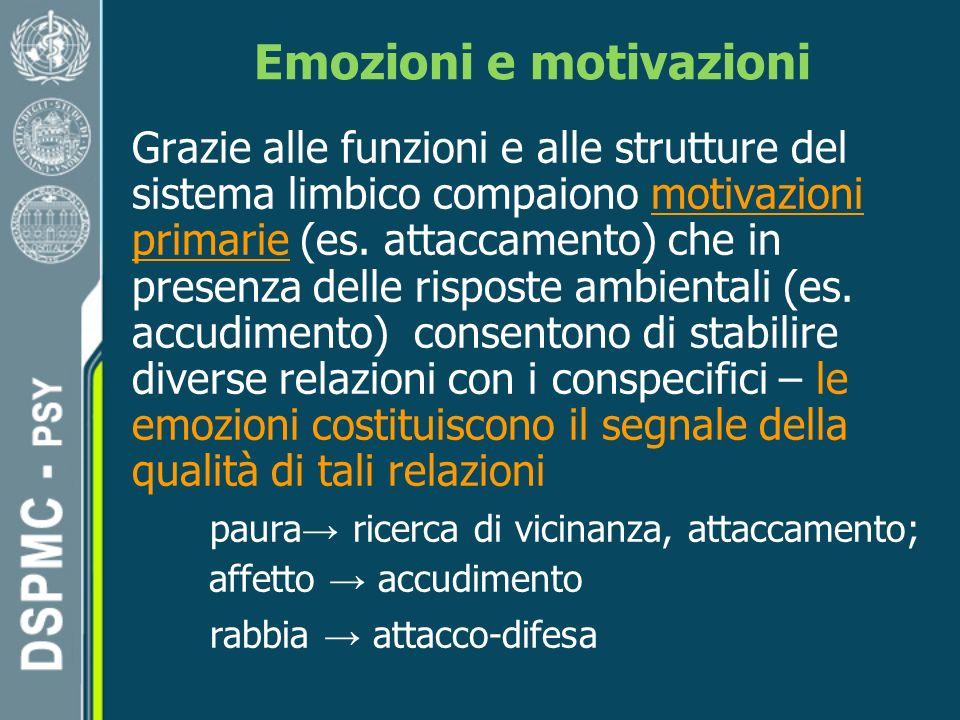 Emozioni e motivazioni Grazie alle funzioni e alle strutture del sistema limbico compaiono motivazioni primarie (es.