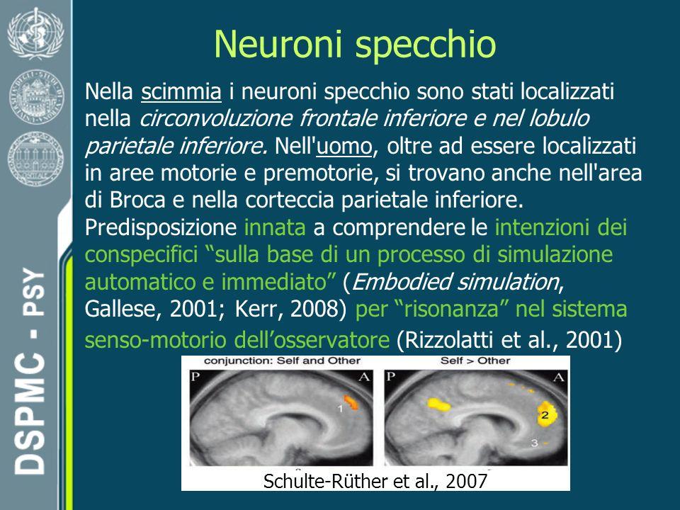 Neuroni specchio Schulte-Rüther et al., 2007 Nella scimmia i neuroni specchio sono stati localizzati nella circonvoluzione frontale inferiore e nel lobulo parietale inferiore.