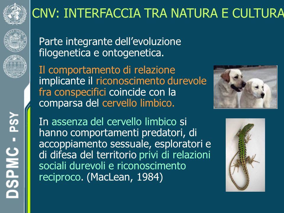 CNV: INTERFACCIA TRA NATURA E CULTURA Parte integrante dellevoluzione filogenetica e ontogenetica.