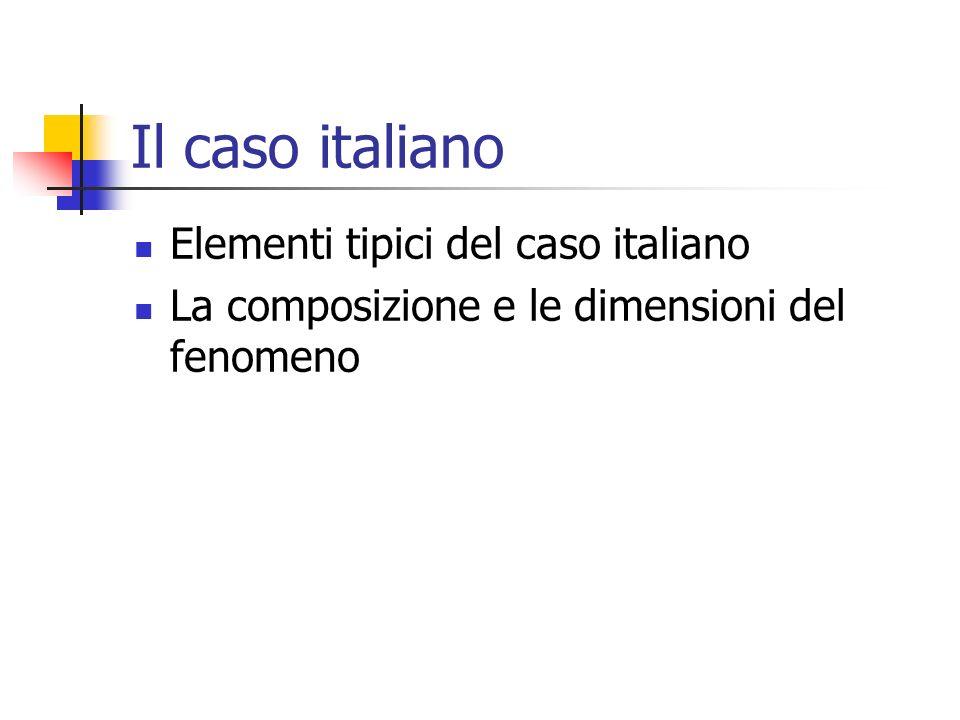 Il caso italiano Elementi tipici del caso italiano La composizione e le dimensioni del fenomeno
