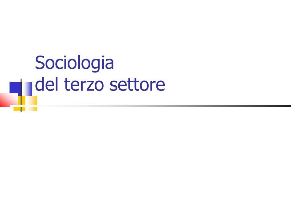 Argomenti Il dibattito terminologico Le teorie tradizionali del terzo settore Il terzo settore e la teoria sociologica Il processo di differenziazione sociale I codici simbolici Terzo settore e semantica della relazione sociale Forme organizzative del terzo settore