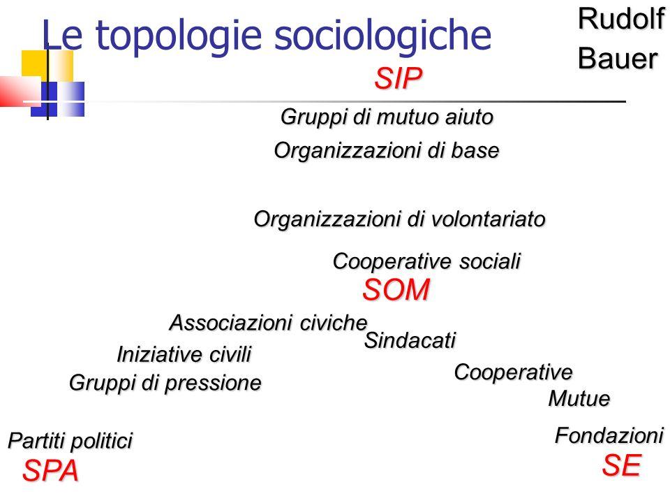 Le topologie sociologicheRudolfBauerSIP SPA SE SOM Gruppi di mutuo aiuto Organizzazioni di volontariato Associazioni civiche Iniziative civili Organiz