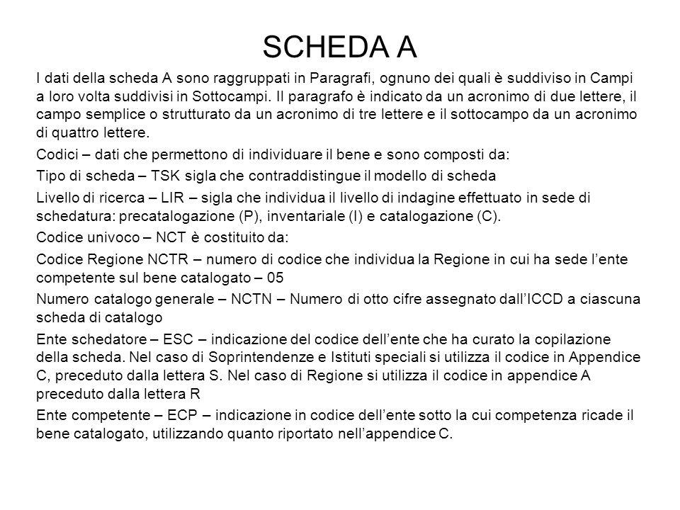 SCHEDA A I dati della scheda A sono raggruppati in Paragrafi, ognuno dei quali è suddiviso in Campi a loro volta suddivisi in Sottocampi.