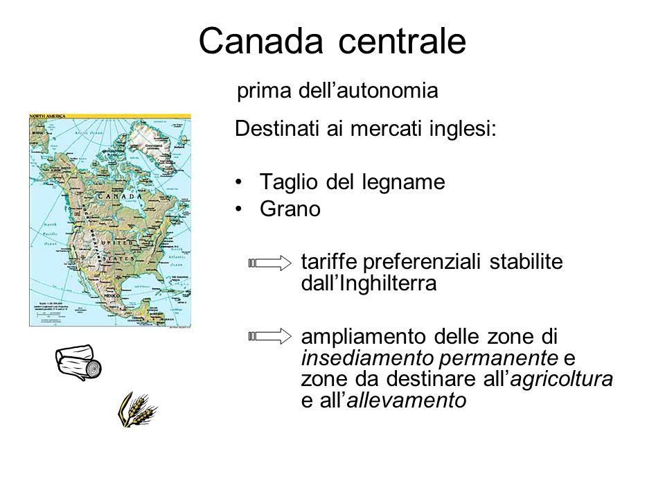 Canada centrale prima dellautonomia Destinati ai mercati inglesi: Taglio del legname Grano tariffe preferenziali stabilite dallInghilterra ampliamento