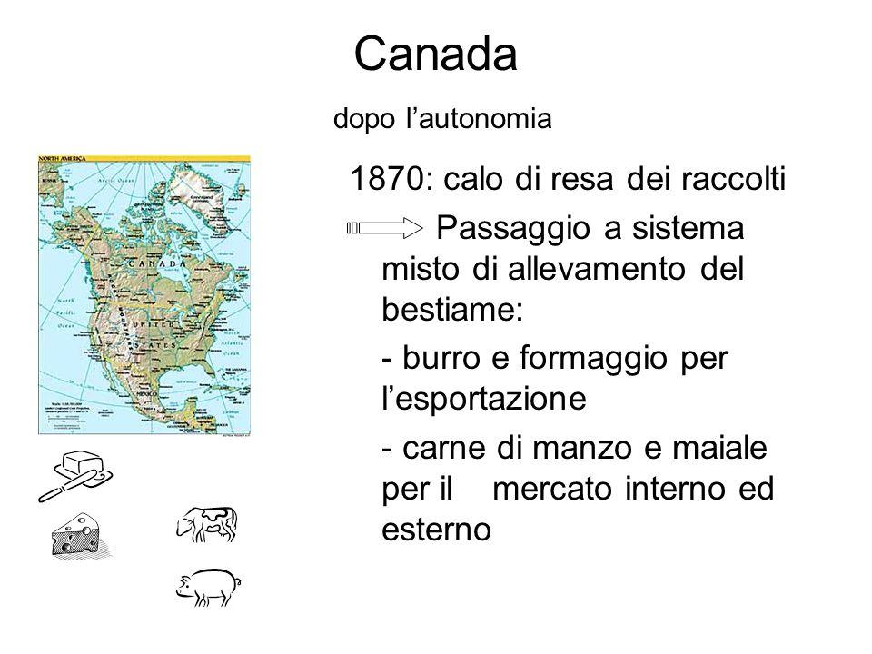 Canada dopo lautonomia 1870: calo di resa dei raccolti Passaggio a sistema misto di allevamento del bestiame: - burro e formaggio per lesportazione -