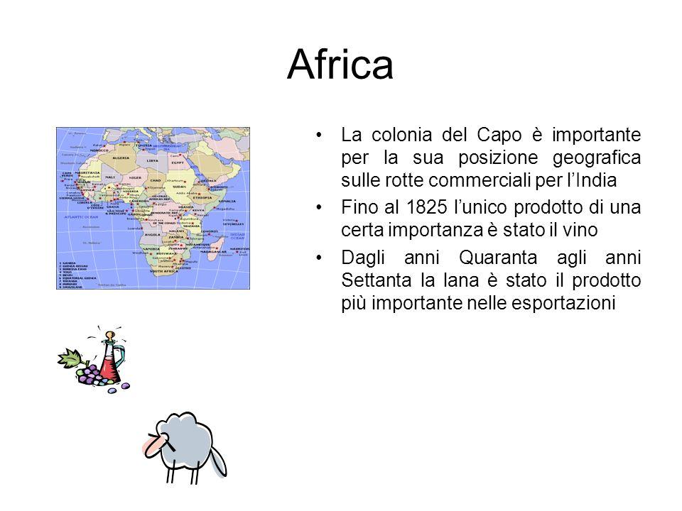 La colonia del Capo è importante per la sua posizione geografica sulle rotte commerciali per lIndia Fino al 1825 lunico prodotto di una certa importan