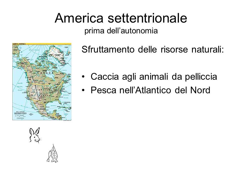 America settentrionale prima dellautonomia Sfruttamento delle risorse naturali: Caccia agli animali da pelliccia Pesca nellAtlantico del Nord