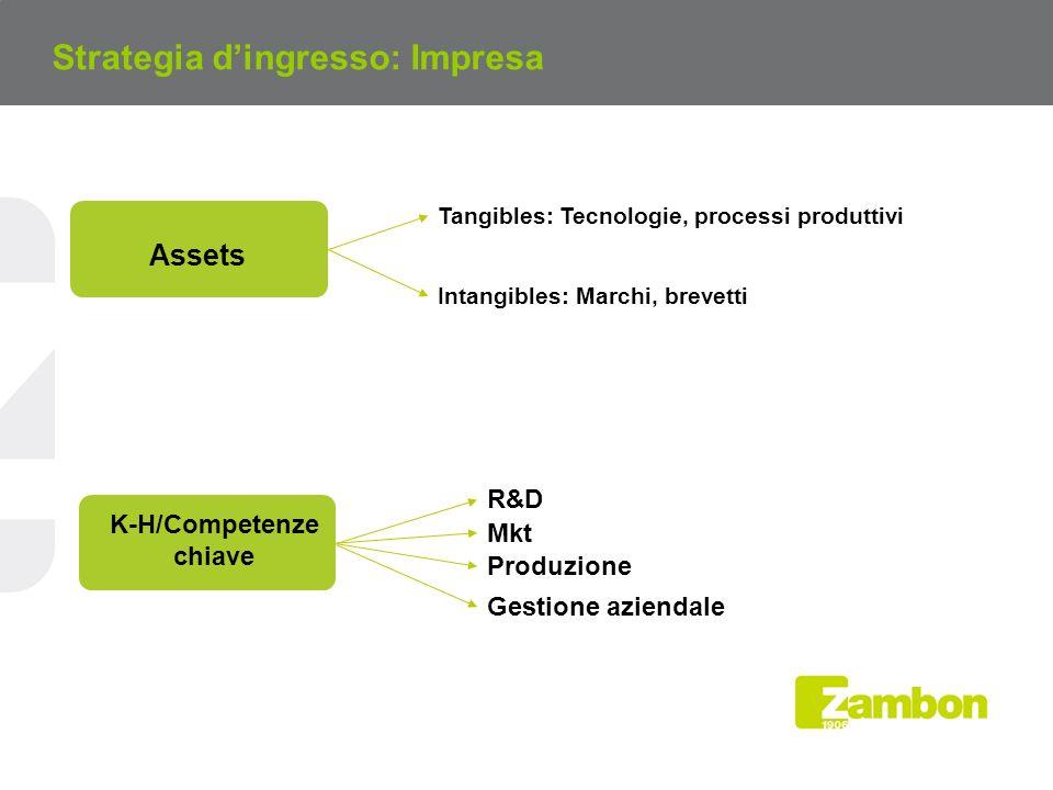 Tangibles: Tecnologie, processi produttivi Intangibles: Marchi, brevetti Assets Mkt K-H/Competenze chiave Produzione Gestione aziendale R&D Strategia dingresso: Impresa