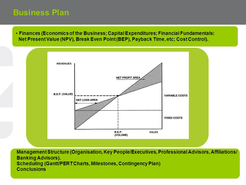 Business Plan Finances (Economics of the Business; Capital Expenditures; Financial Fundamentals: Net Present Value (NPV), Break Even Point (BEP), Payback Time, etc; Cost Control).