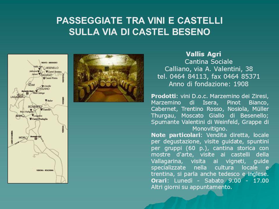 PASSEGGIATE TRA VINI E CASTELLI SULLA VIA DI CASTEL BESENO Vallis Agri Cantina Sociale Calliano, via A. Valentini, 38 tel. 0464 84113, fax 0464 85371