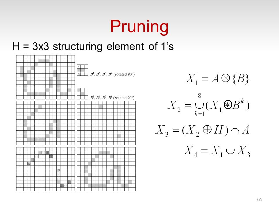 Pruning 65 H = 3x3 structuring element of 1s